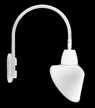 "RAB Lighting GN4LED13NSACW - GOOSENECK WALL 20"" HIGH, 19"" FROM WALL 13W NEUTRAL LED 15"" ANGLED CONE SHADE SPOT REFLEC"